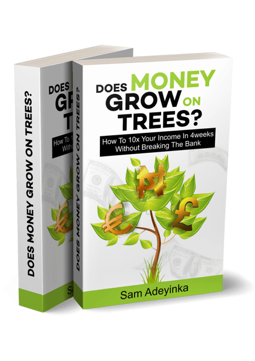 doesmoneygrowontrees transparent 500x707 - How to 10x Your Income in 4 Weeks Without Breaking the Bank!
